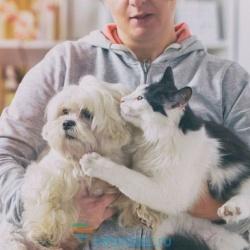 Photo of 10 речей, які відбудуться з вашим тілом, коли ви заведете собі собаку, кішку або іншого вихованця